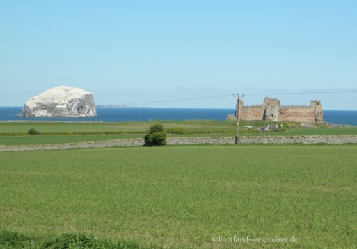 Bass Rock und Tantallon Castle, Schottland