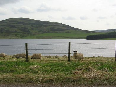 Whiteadder Reservoir Lammermuirs Schottland